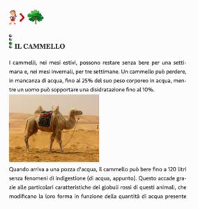 pianeta-acqua-il-cammello